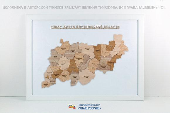 Костромская область - спилс-карта стандарт