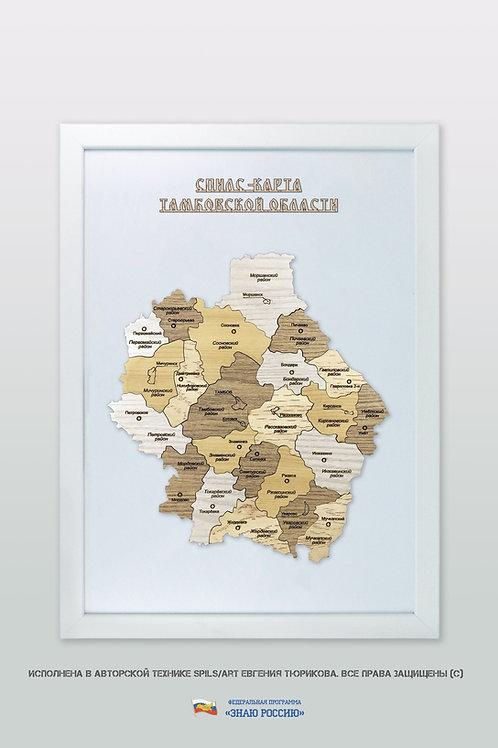 Тамбовская область - спилс-карта стандарт