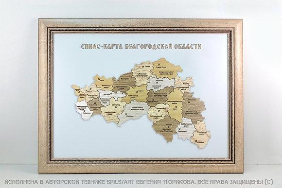 Спилс-карта Белгородской области стандарт плюс