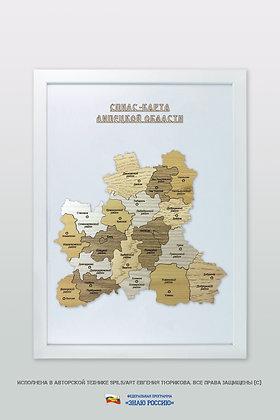 Липецкая область - спилс-карта стандартная