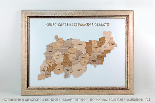 Спилс-карта Костромской области стандарт плюс