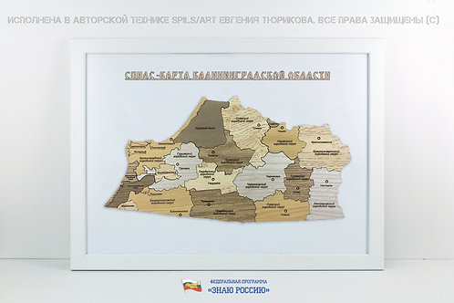 Калининградская область - спилс-карта стандарт