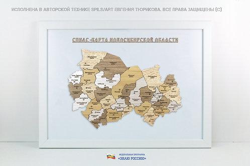 Новосибирская область - спилс-карта стандарт