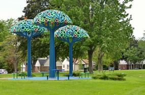 Enderis Playfield, Magic Grove