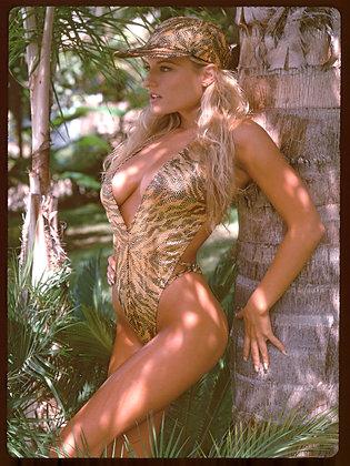 Jungle Cat 01