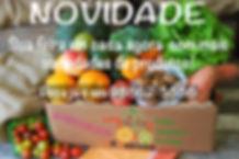 Imagem de Informação