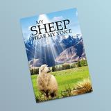 JC-hedgecock My_Sheep_Hear_My_Voice book