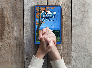 My Sheep Hear My Voice book