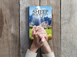 My Sheep Hear My Voice 2021 book