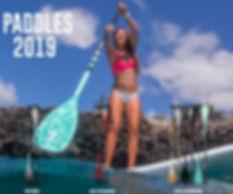 fanatic-sup-paddles-2019-kite-shop-schwe