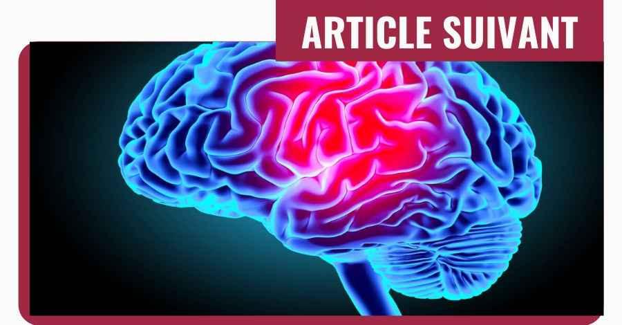 mindmapping cerveau carte mentale etudiant droit