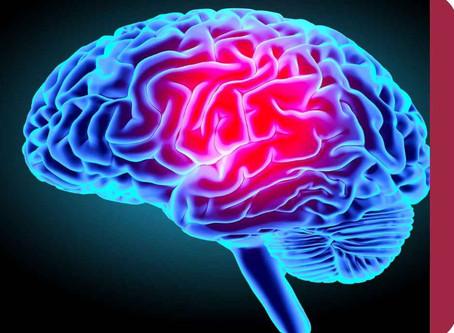 Le mindmapping : la tendance qui va révolutionner vos études de droit