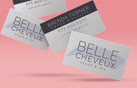 Belle Cheveux Business Cards.jpg