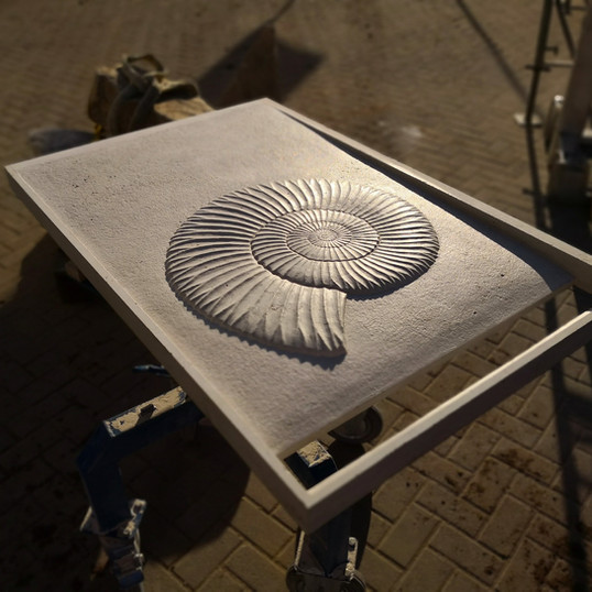 Duschtasse Ammonit