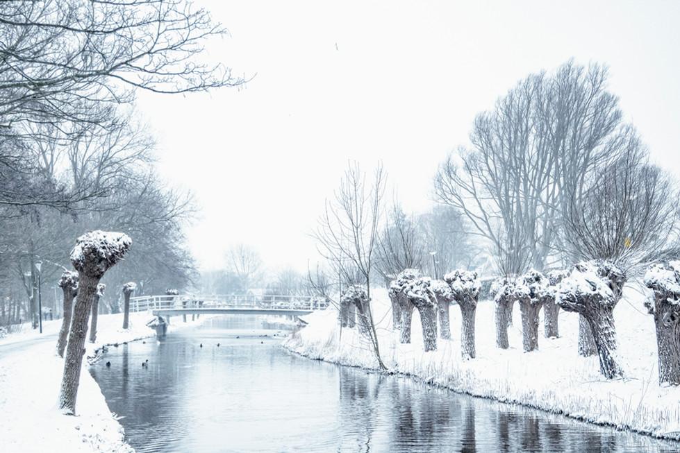 Sneeuw 2021 Weverskade-208626.jpg