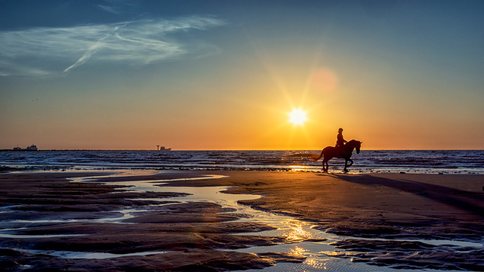Zonsondergang met paard wv.jpg