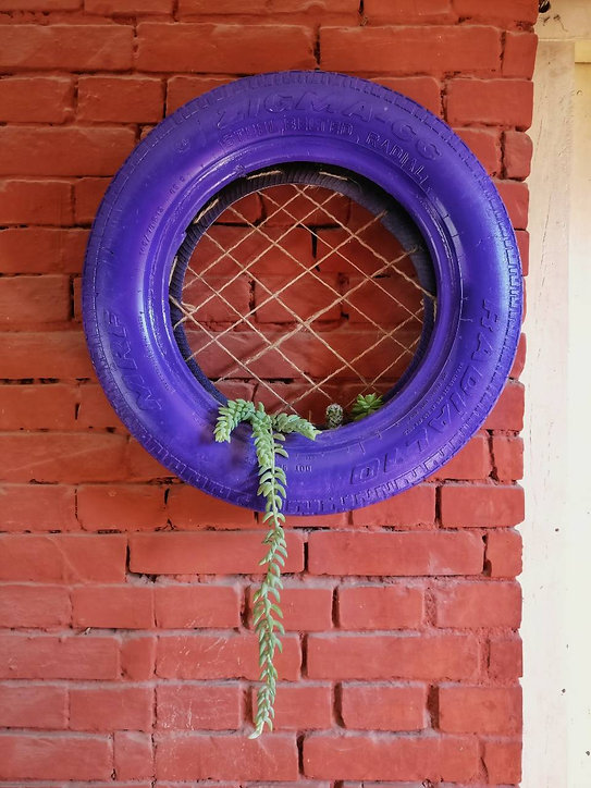 tyre upcycled recinto plant pot/gamala  in nepal