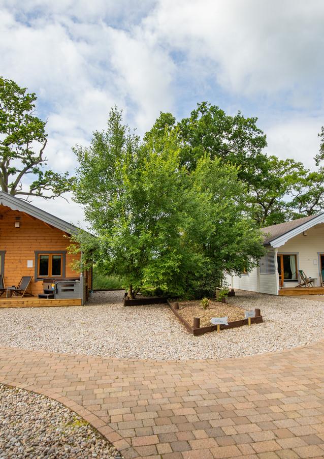 Bazare & Zoffany Log Cabins