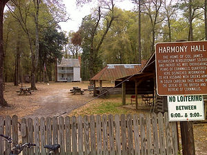 Harmony Hall plantation - one of the old