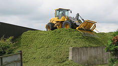 Silage Pit Safety Issues A.JPG