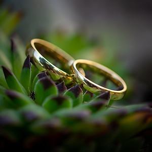 The Wedding of Christiana & Dovydas 24th