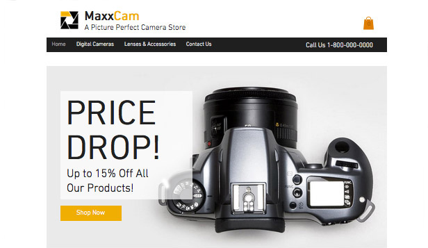 Electronics website templates – Camera Shop