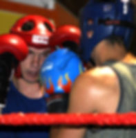 Some friendly sparring