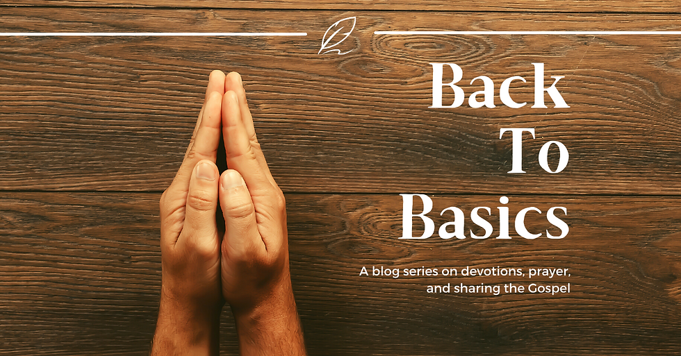 Back to the Basics cover2.png