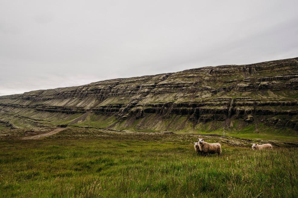 Islanda28.jpg