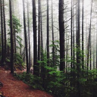 Eco-Spiritual Guidance