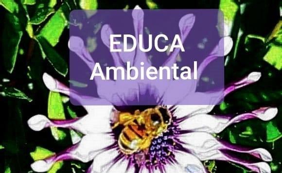 Conhece a EDUCA Ambiental? Apoie você também !