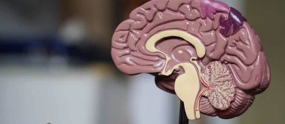 No que você está pensando? As sobreposições entre Saúde Planetária e doenças do sistema nervoso.