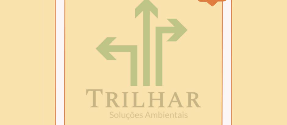 Produções no território #003: Entrevista @Trilhar.SA