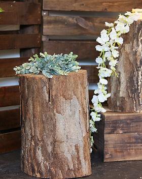Wooden aisle stumps (3).JPG
