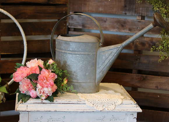 Long Necked Watering Can