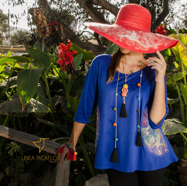 Polera Azul y Sombrero Rojo Picaflor (BOSES)