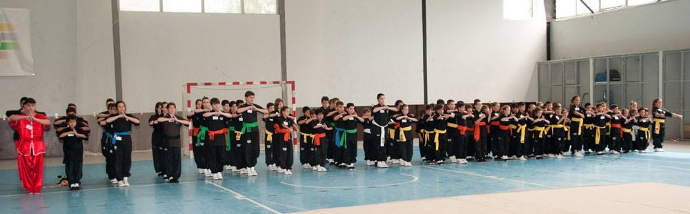 Gallego Kungfu Moderno Equipos