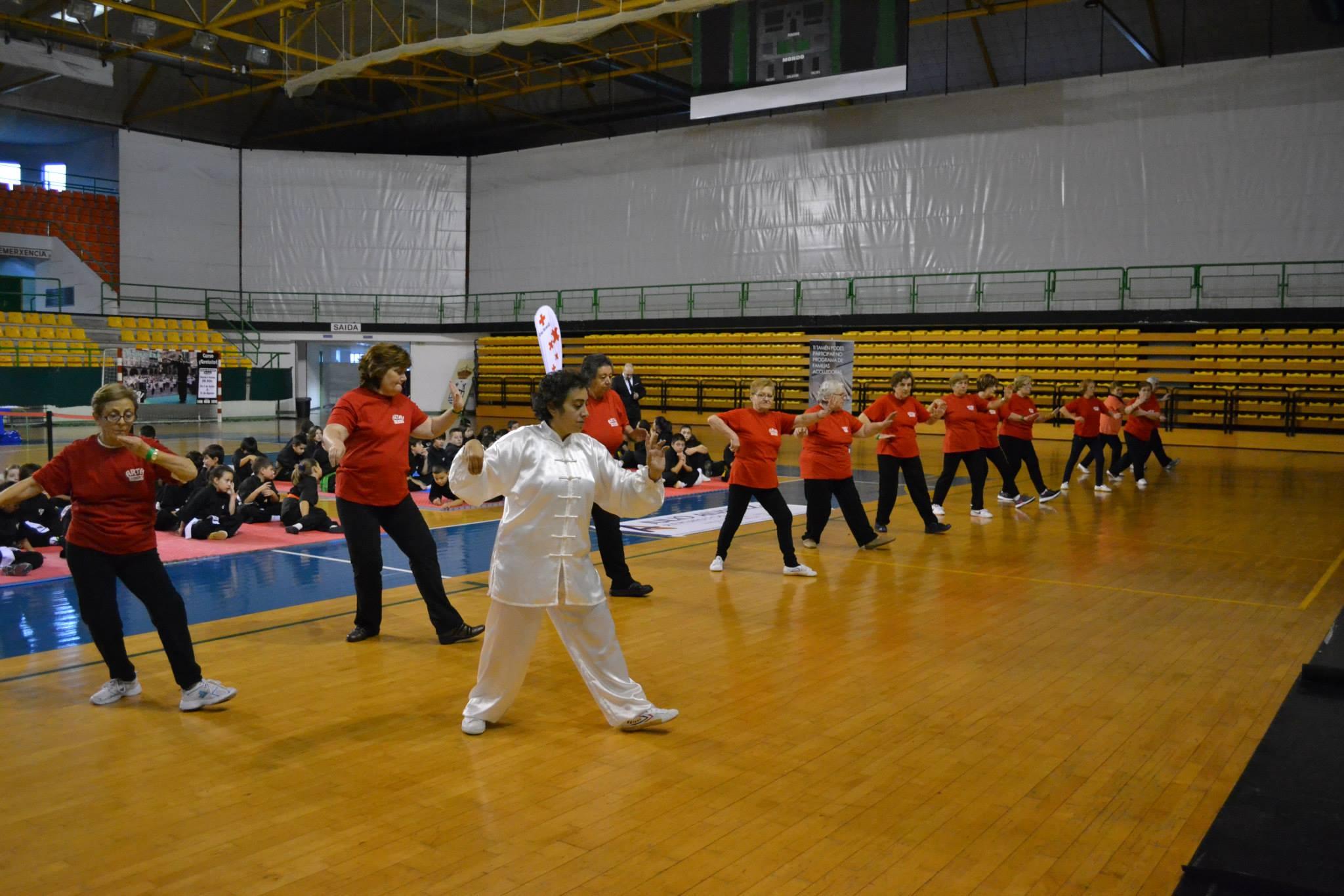 Taich III Copa Diputación Kungfu