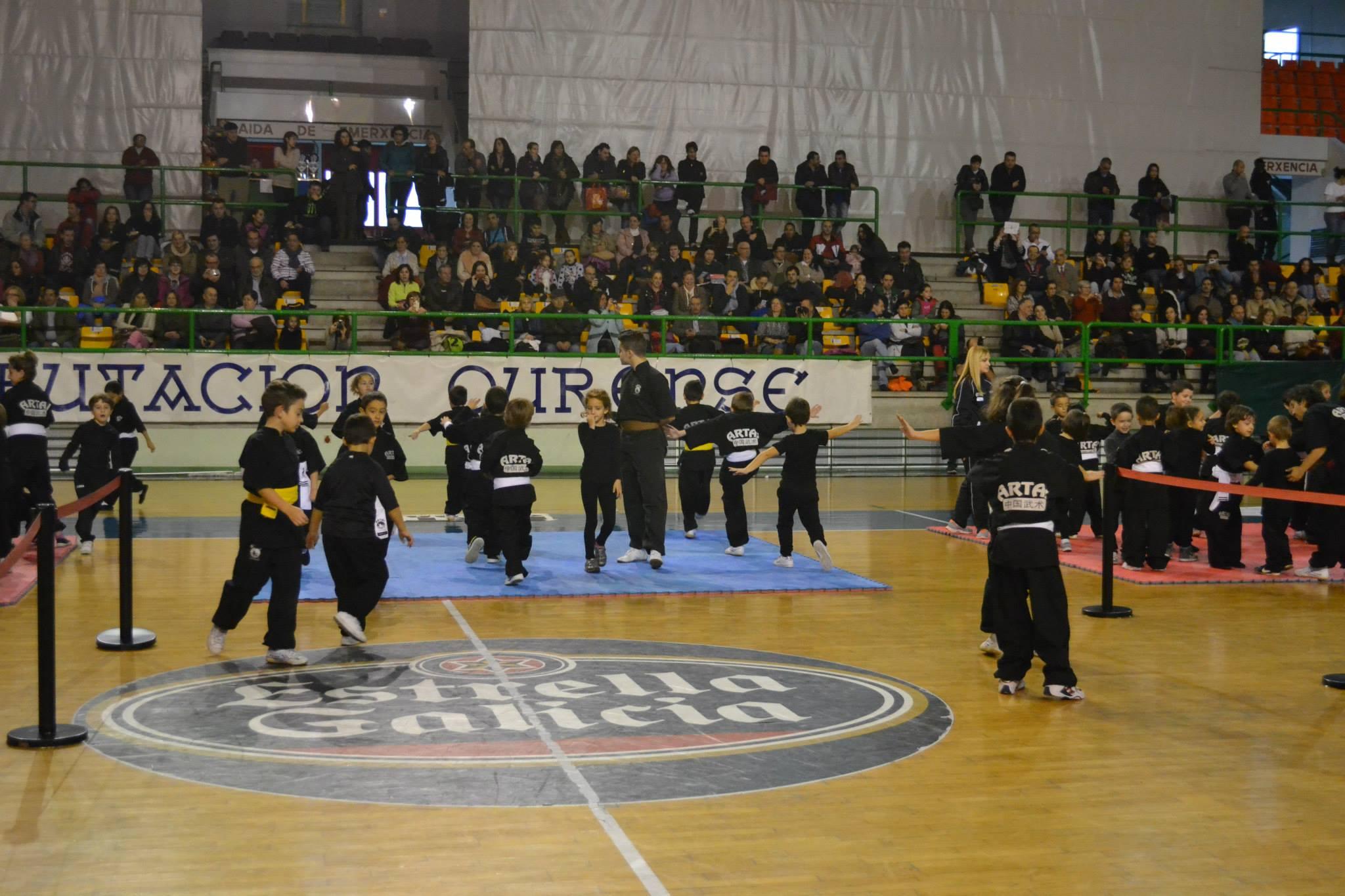 III Copa Diputación Kungfu