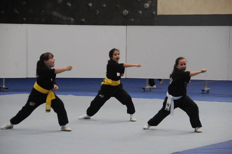 Cpto. Gallego 2015 de Kungfu Moderno