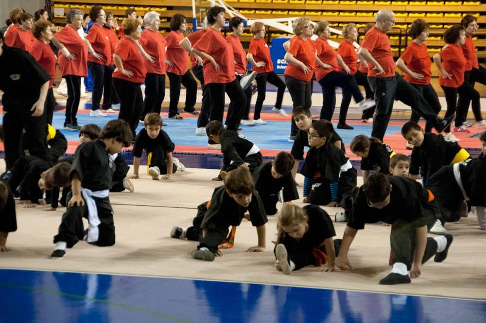 Copa Diputación Kungfu Moderno 2015