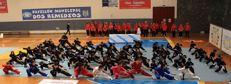 Cpto. Gallego Kungfu Moderno 2015