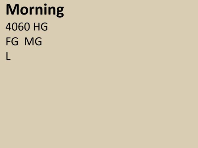 4060 HG Morning.JPG