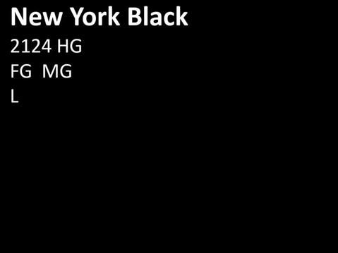 2124 HG New York Black.JPG