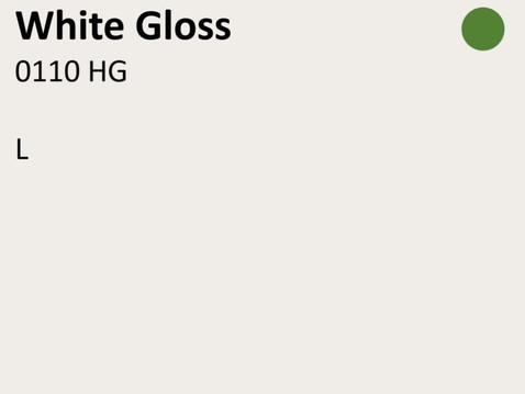 0110 HG White.JPG