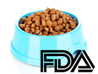 Dog Foods Linked to Heart Disease