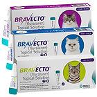 Bravecto feline.jpg