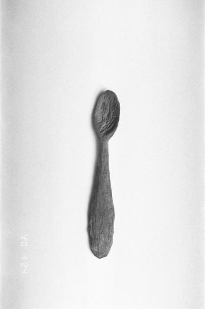 spoon.000100810025_25.jpg