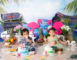 twin cake smash session ideas hawaii theme flamingo coconuts ocean mountain dolphins cycle kids photography one year old tutu dress beautiful first birthday twin babies twin siblings