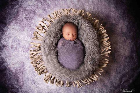 newborn photography chennai baby pose portrait game of thrones twig fur ruler purple